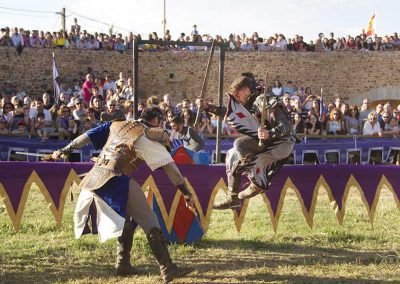 Lucha Medieval